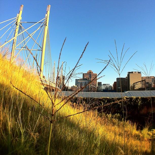 Probably my favorite shot of Nelson Mandela bridge.  (Taken with  Instagram )