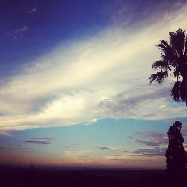 #sunset  (Taken with  Instagram  at Shepstone Gardens)