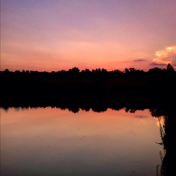 #sunset take 2 (Taken with  Instagram  at Emmarentia Dam Dog Park)