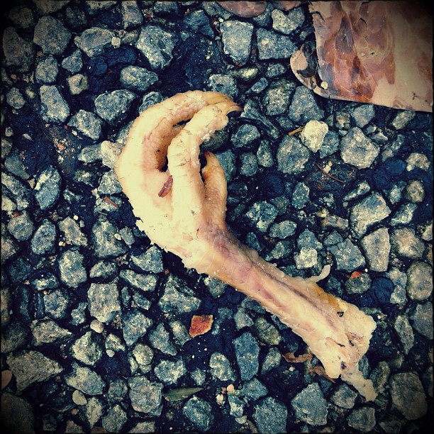 Chicken foot #streetphotography #brixton  (Taken with  instagram )