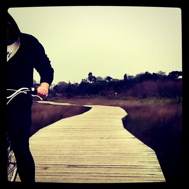 Boardwalk Bike Ride #2 (Taken with  instagram )