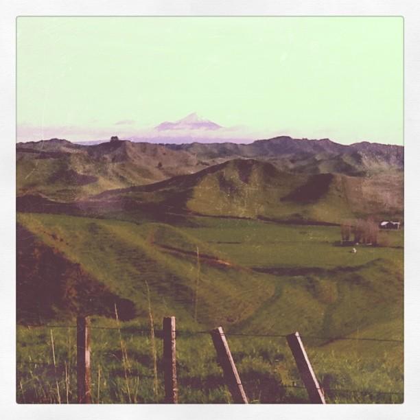Along the Forgotten World Highway (Taken with  instagram )