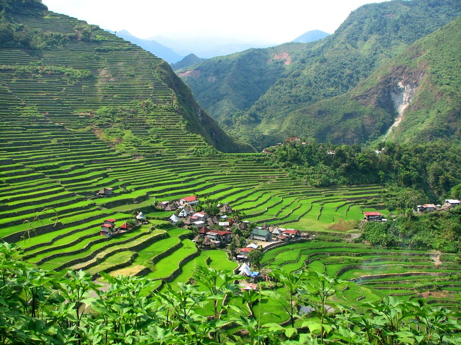 Batad-Village-and-Rice-Terraces.jpg