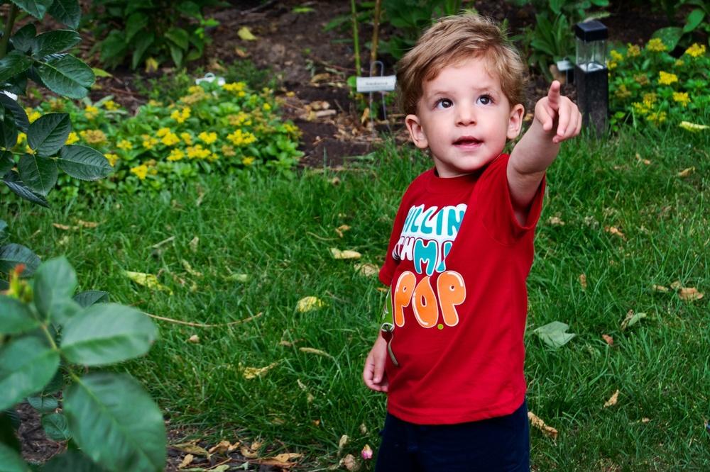 Dylan Exploring 2.jpg