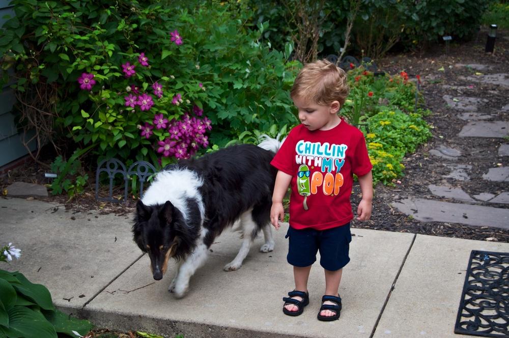Dylan Exploring 5.jpg