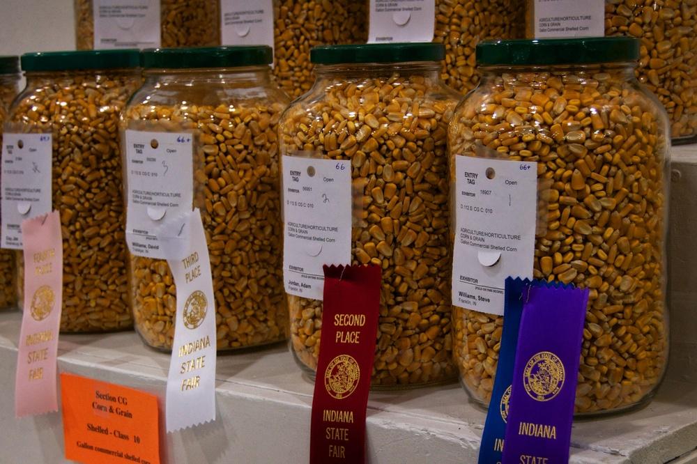 State Fair 2013 10.jpg