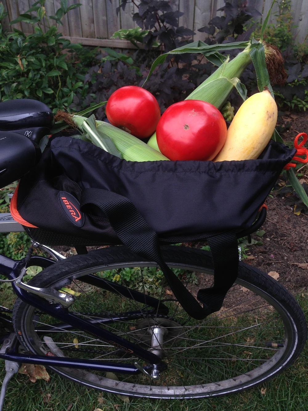 Bike Bag.jpg
