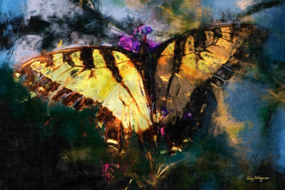 Glowing Butterfly.jpg