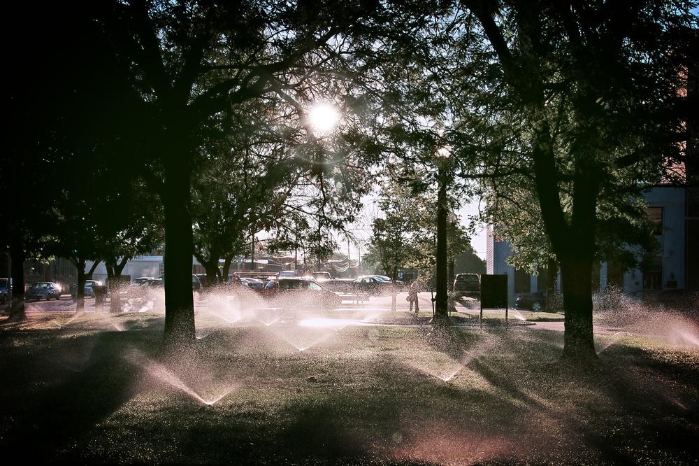 Morning Sprinkles.jpg