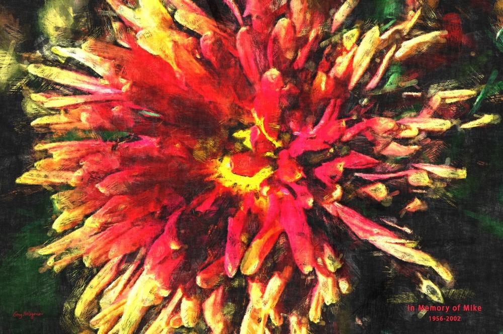 mikes.flower.jpg