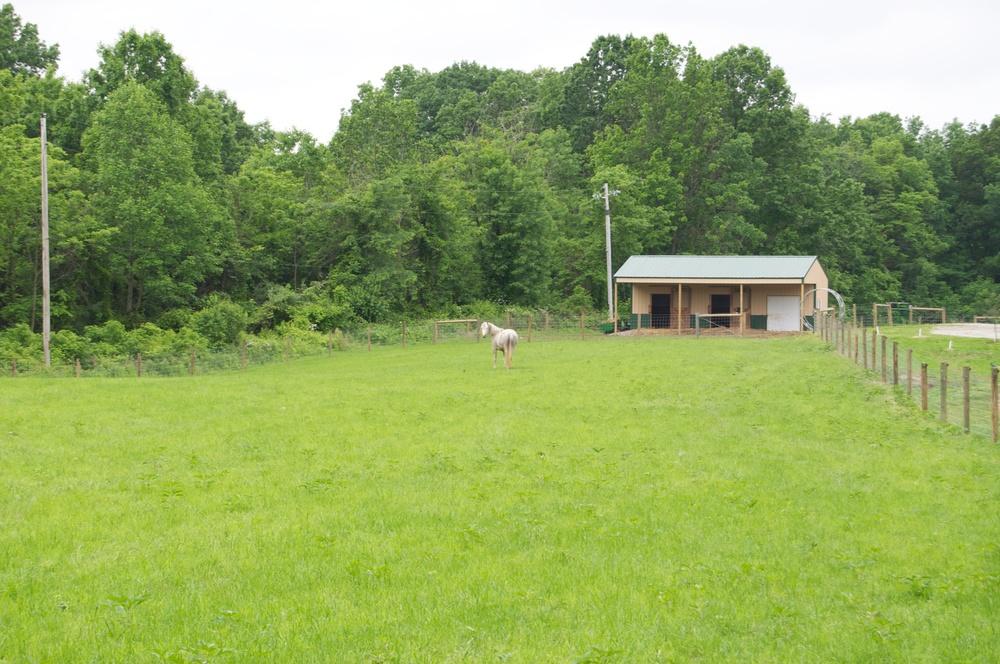 Anne's Farm 2011.jpg