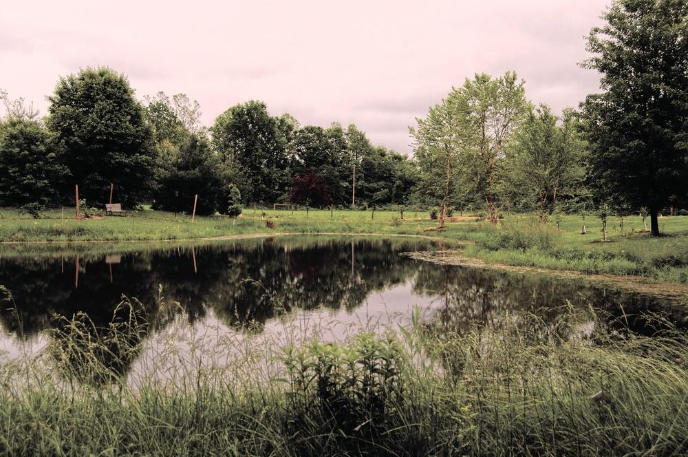 Cardinal Point Farm 54.jpg