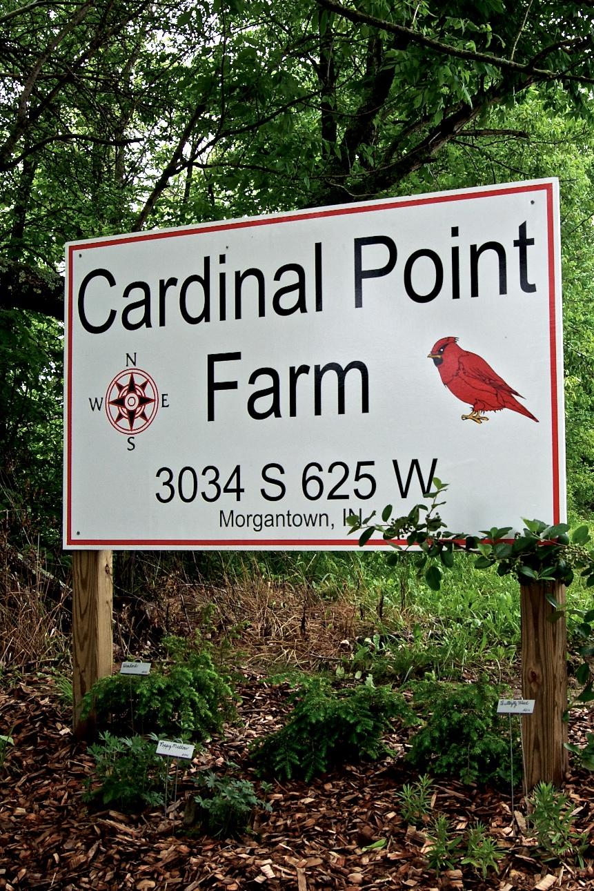Cardinal Point Farm 144.jpg