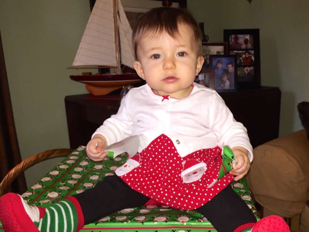 Bailey's Christmas Dress.jpg