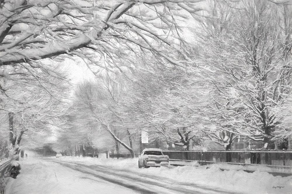 Snowy Street • December, 2012