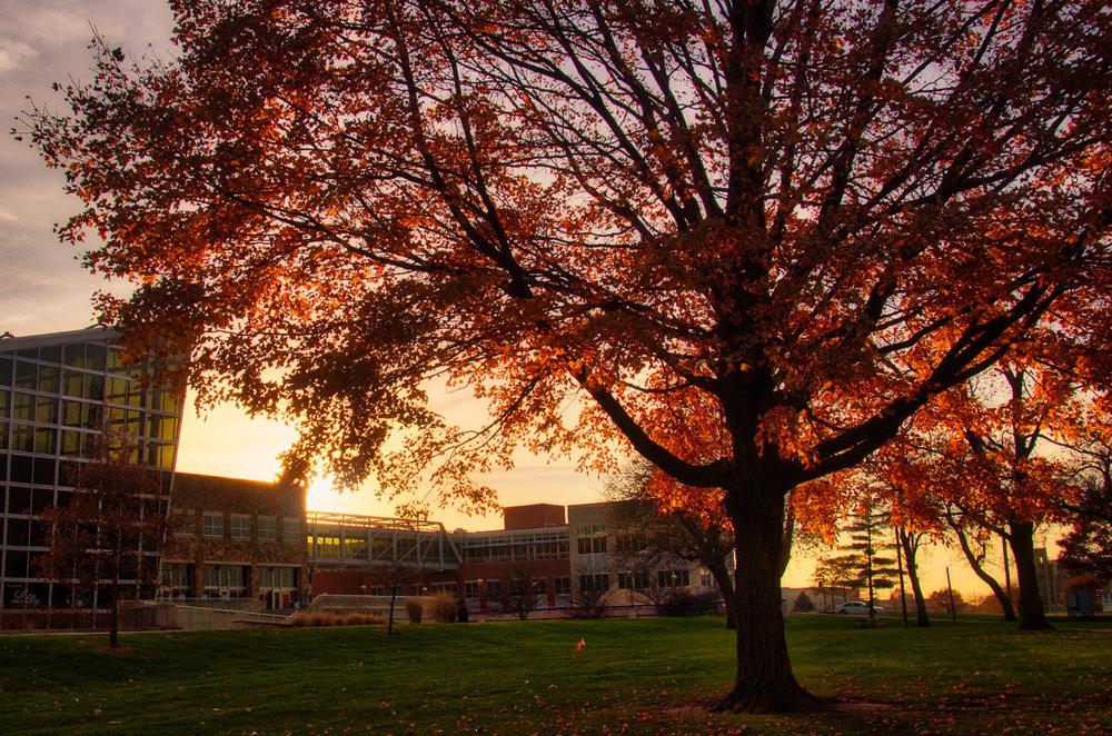 autumnglow.jpg