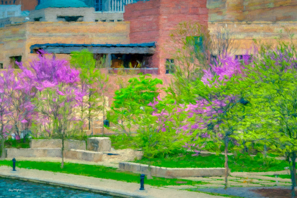 Springtime photos make beautiful digital paintings. Click the photo to check out other digital paintings in my  Canal Walk  gallery.