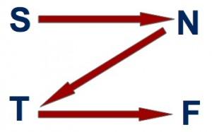 Z-model