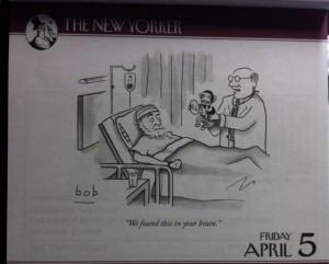 monkey found in brain new yorker april 5
