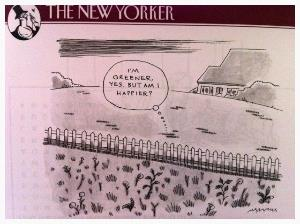 The New Yorker grass is greener.jpg