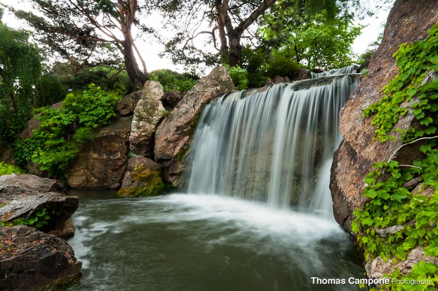 Chicago Botanic Garden Thomas Campone Photography