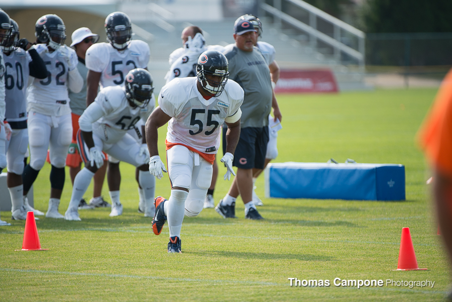 Chicago Bears Training Camp 2014-5.jpg