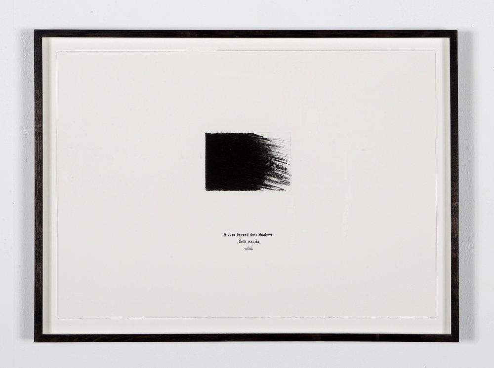 Hidden Beyond Dust-Shadows , drypoint and letterpress, 34.5cm x 49.5cm, 2018