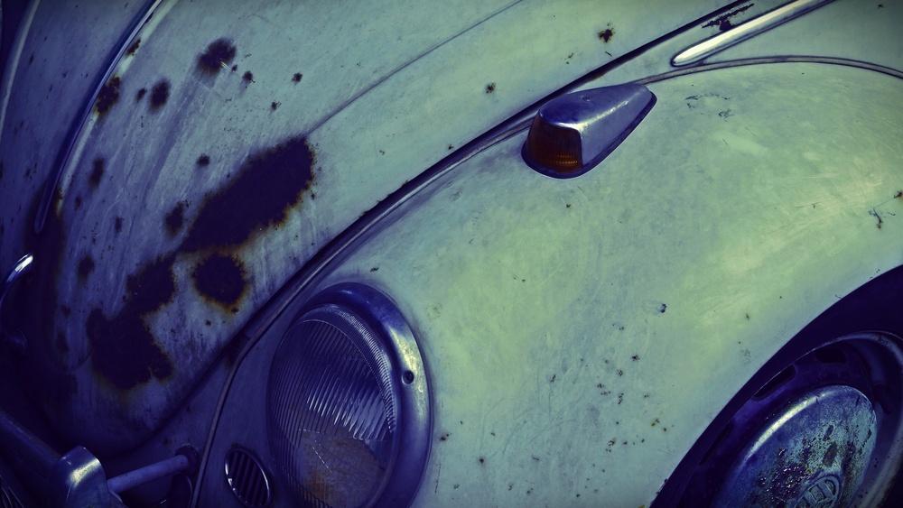 01 Beetle.JPG
