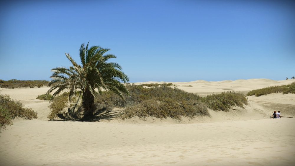 Maspalomas Beach.JPG