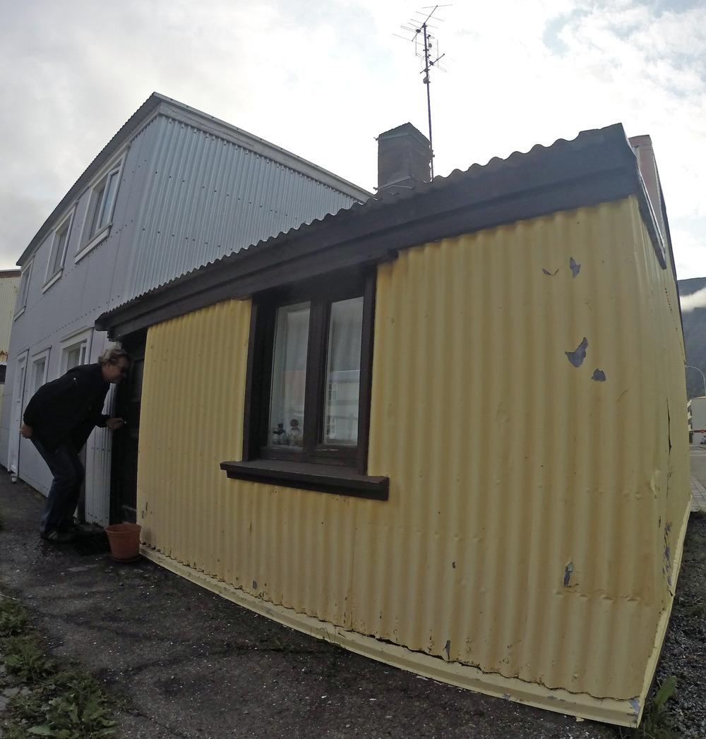Small Icelanders_edited-1.JPG