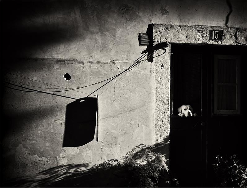 Photo by Mirela Momanu