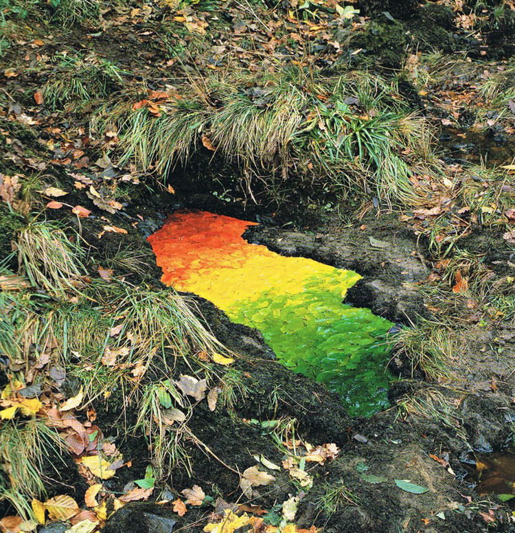 land-art-andy-goldsworthy-13.jpg