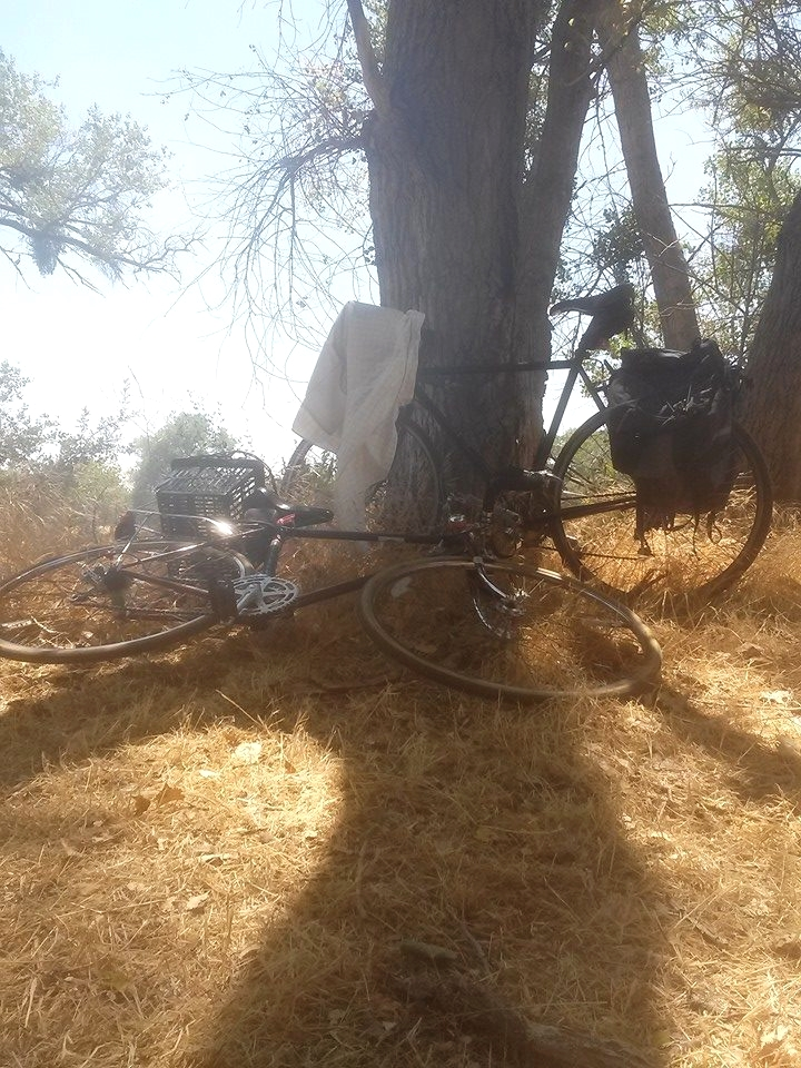 Here's evidence of a bike picnic with Mel at Camp Pollock in July