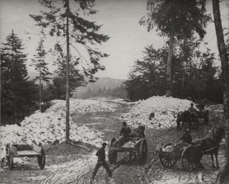 Horses hauling two wheel dump carts full of gypsum from the quarry down to the train.   19 September 1890   Hillsborough, New Brunswick, Canada