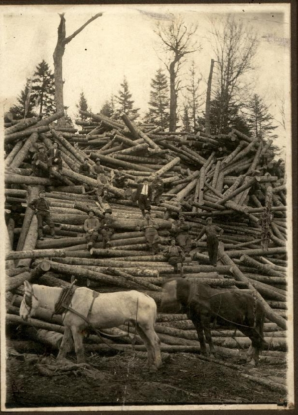 Unidentified Log Crew sitting on a pile of logs. 1915