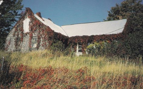 This is King John Steeves' house before it started to fall down. This a side view that I have on a postcard