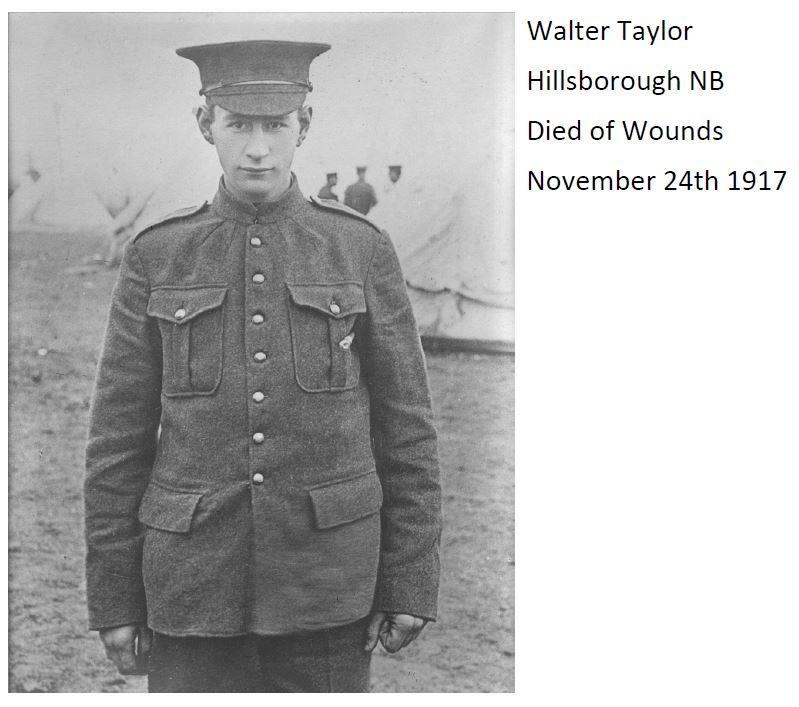 Taylor Nov 24 1917.JPG