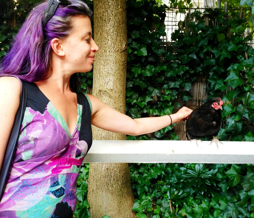 Hanging out with a chicken in Brussels
