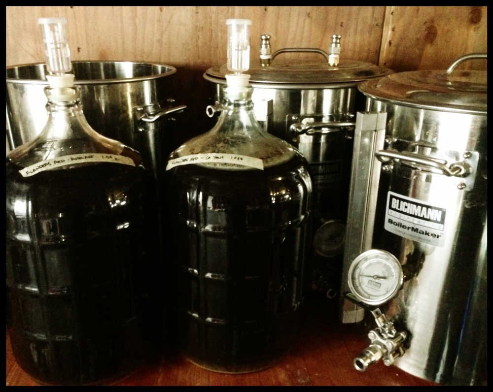 homebrew-101-photo.JPG