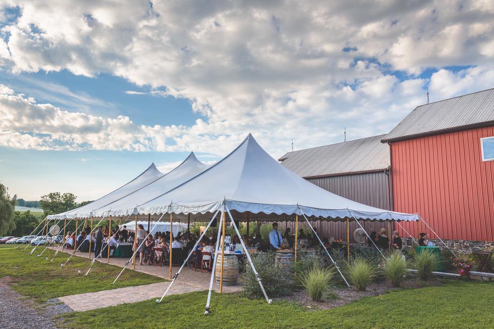 jen-bob-wedding-unionville-vineyards-nj-45.jpg