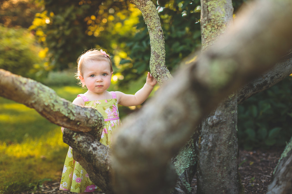 Portrait Willowwood Arboretum