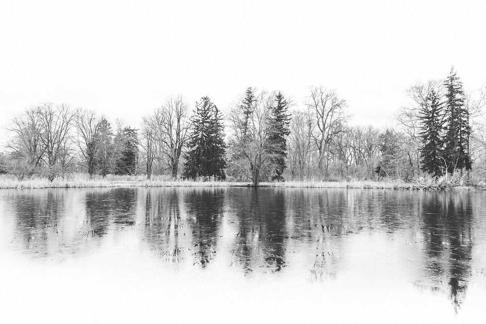 Duke Farms Winterscape