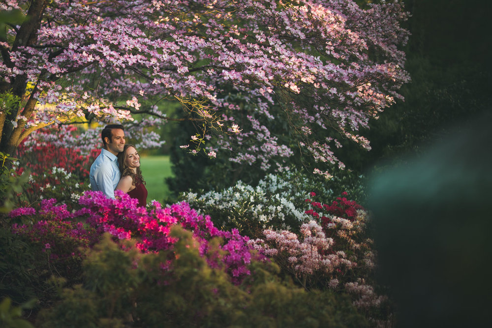 Garden Sunset Engagement Photo