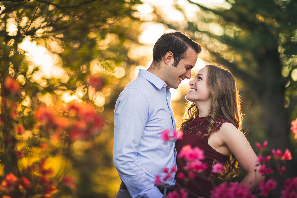 Ringwood Engagement Photos