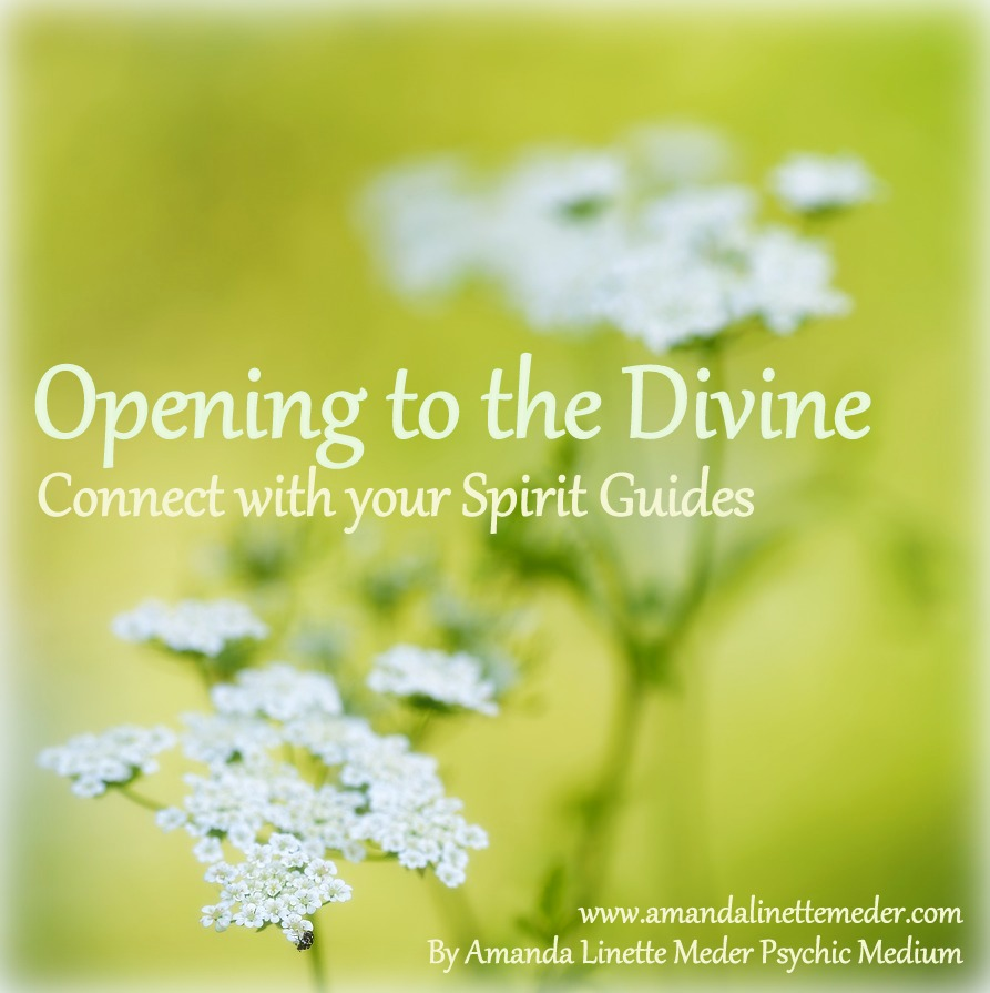 Connect with your spirit guides course. Affordable. Distance. Online. Meet your Spirit Guides.