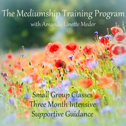 Spring 2014 Mediumship Training Program. Learn to connect with Spirit Guides, Angels and Loved Ones for yourself and others. Join the Mediumship and mediums training program via distance and teleseminar!! Registration is now open!