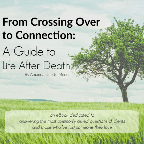 Have you recently lost a loved one? Have questions about what has happened to them in the afterlife? Wondering how to sense their presence or what the signs are that they visit? This book answers the most commonly asked questions about the afterlife, from psychic medium Amanda Linette Meder.