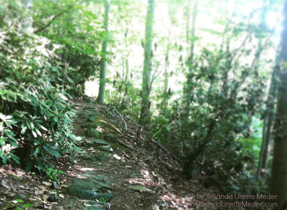 9 spiritual links for shifting your mindset this month -Photo: Amanda