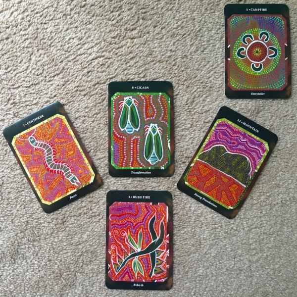 Cactus Spread Reading for Abundance, technique by Amanda Linette Meder
