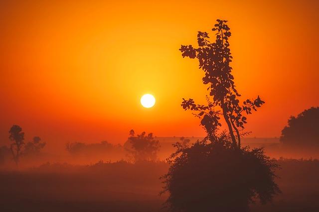 sunrise-1955121_640.jpg